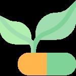 Bitkisel Kozmetik Ürünleri